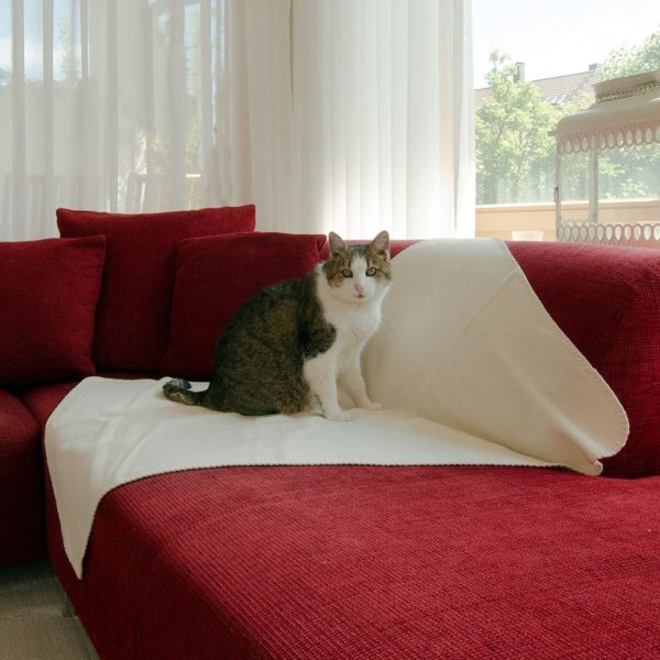"""Katzen-Decke """"Calina"""" - 75x100 cm - beige von allnatura"""
