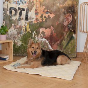 """Hunde-Schurwoll-Steppdecke """"Vellon"""" - 120x100cm von allnatura"""