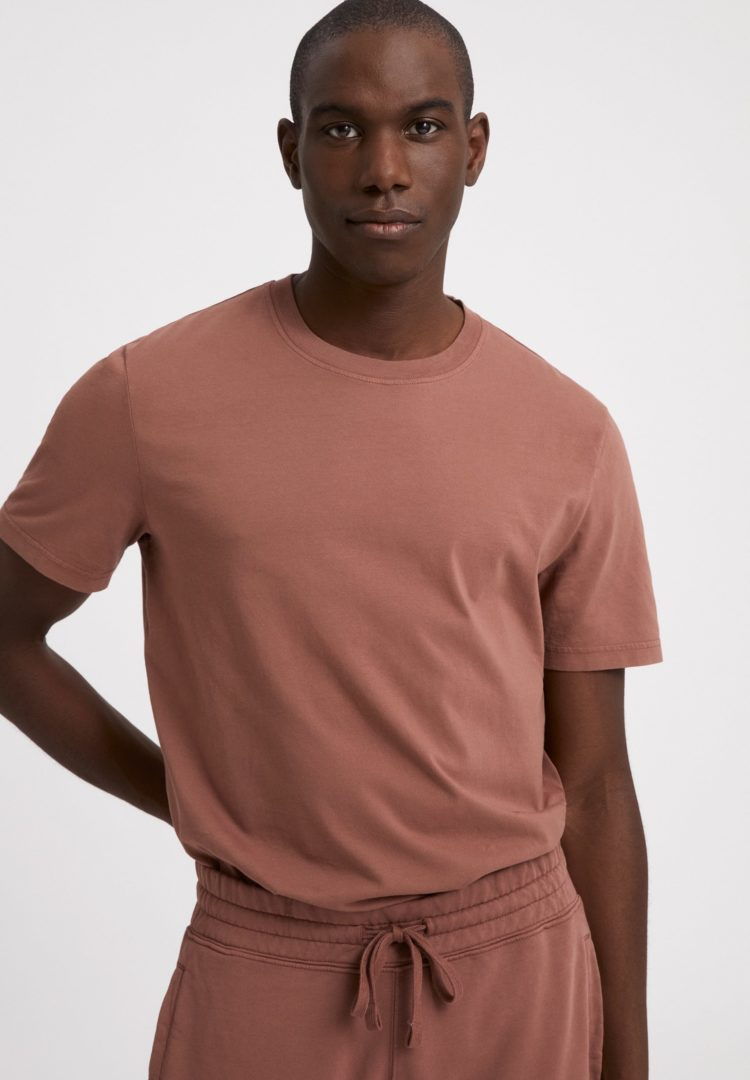 T-shirt Aado Earthcolors® In Natural Dusty Rose von ArmedAngels